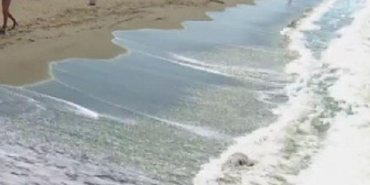 Humb jetën një pushues në plazhin e Tales, në Lezhë
