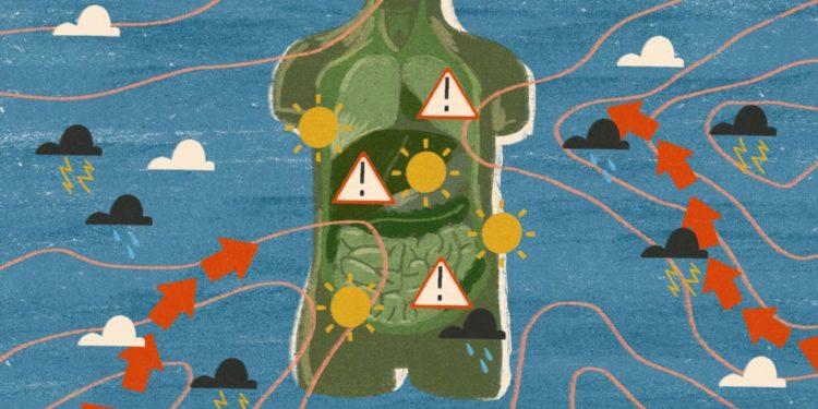 Shkencëtarët: Po sëmuremi prej ndryshimeve klimaterike