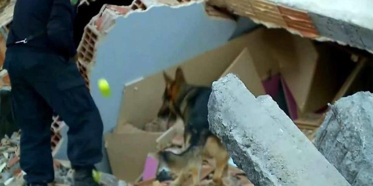 FOTO / Heroi me katër putra, që shpëtoi jetë njerëzish në rrënojat e Durrësit